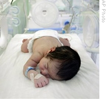 premature birth and early hospitalization essay