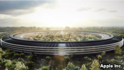 An artist rendition of Apple's new 'spaceship' headquarters in Cupertino, California. Company officials have said they expect the new building to be ready for move-in sometime in 2017. (Courtesy: Apple)